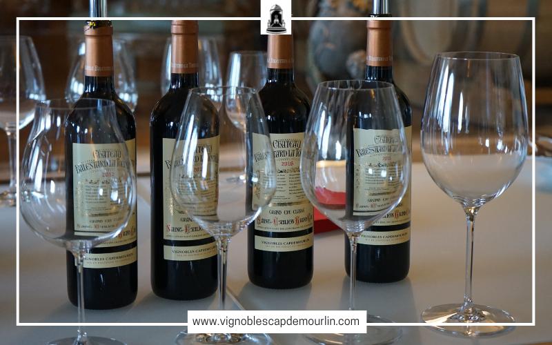 5 conseils pour choisir un verre à vin pour boire un vin de Saint-Emilion Grand Cru Classé ?
